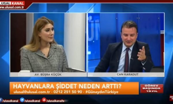 Bakırköy avukat hayvan hakları avukatı